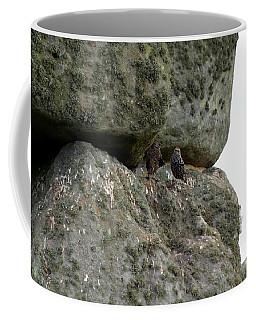 Stonehenge Birds Coffee Mug