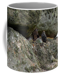 Stonehenge Birds Coffee Mug