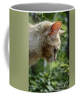 Stop And Smell The Flowers 9433a Coffee Mug