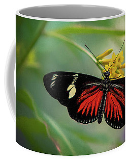 Coffee Mug featuring the photograph Butterfly, Stop And Smell The Flowers by Cindy Lark Hartman