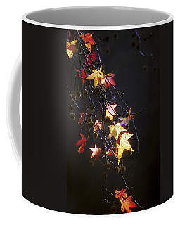 Storm's Bliss Coffee Mug