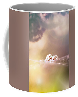 Coffee Mug featuring the photograph Story Of A Spider by Jaroslav Buna