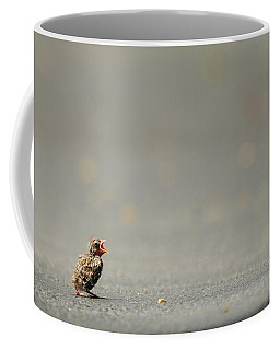 Story Of The Baby Chipping Sparrow 3 Of 10 Coffee Mug by Joni Eskridge