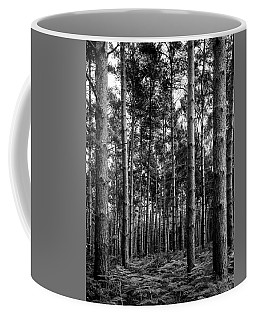 Coffee Mug featuring the photograph Straight Up by Nick Bywater