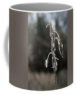 Straw In Backlight Coffee Mug