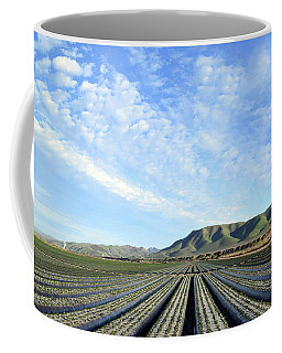 Coffee Mug featuring the photograph Strawberry Fields Forever 2 by Floyd Snyder