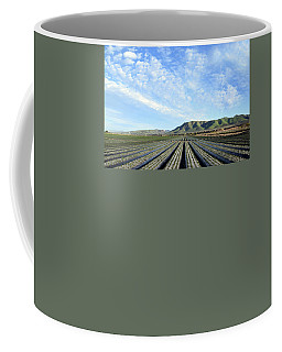 Coffee Mug featuring the photograph Strawberry Fields Forever 3 by Floyd Snyder