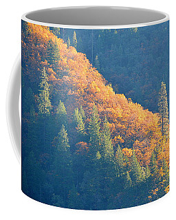 Coffee Mug featuring the photograph Streak Of Gold by AJ Schibig