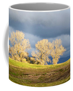 Coffee Mug featuring the photograph Streak Of Light by AJ Schibig