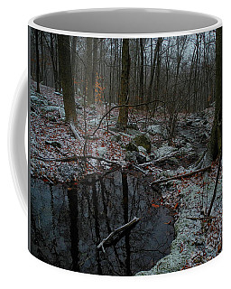 Stream Comes Down Along The At In Ny Coffee Mug by Raymond Salani III
