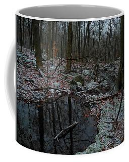 Stream Comes Down Along The At In Ny Coffee Mug by Raymond Salani III