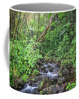 Stream In The Rainforest Coffee Mug