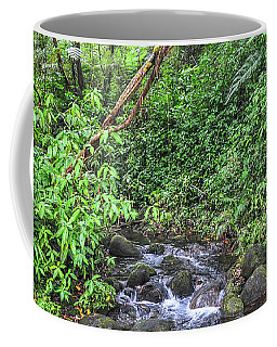 Stream In The Rainforest Coffee Mug