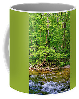 Coffee Mug featuring the photograph Stream Side by Christopher Holmes