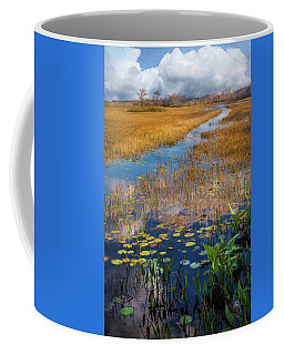Coffee Mug featuring the photograph Stream Through The Everglades by Debra and Dave Vanderlaan