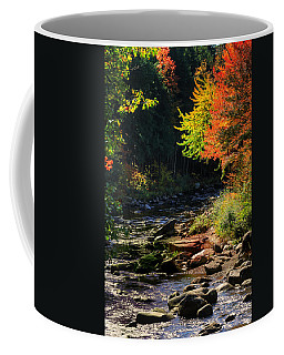 Coffee Mug featuring the photograph Stream by Tom Prendergast