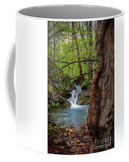 Stream Wonder Coffee Mug