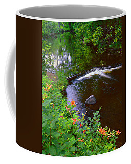 St.regis River Coffee Mug