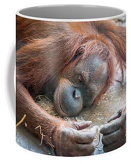 String Theory II Coffee Mug