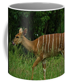 Striped Gazelle Coffee Mug