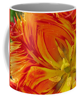 Striped Parrot Tulips. Olympic Flame Coffee Mug