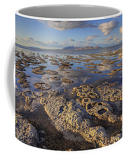 Stromatolites And Antelope Island Coffee Mug