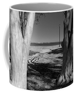 Coffee Mug featuring the photograph Study In Black And White by Rosanne Licciardi