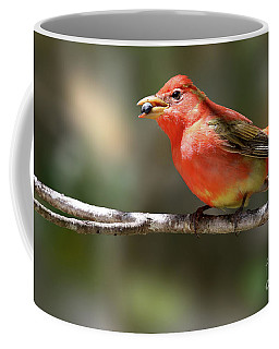 Stuffed Summer Tanager Coffee Mug