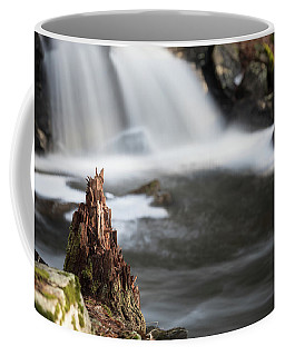 Coffee Mug featuring the photograph Stumped At The Secret Waterfall by Brian Hale