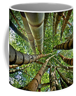 Stunning Bamboo Forest - Color Coffee Mug