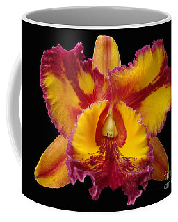 Coffee Mug featuring the photograph Stunning Orchid Closeup by Sue Melvin