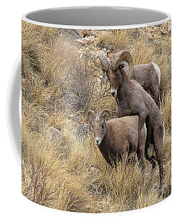 Committed To The Cause Coffee Mug