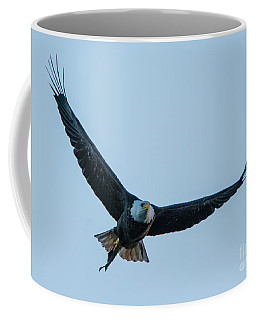 Coffee Mug featuring the photograph Successful Bald Eagle by Jeff at JSJ Photography