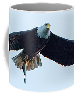 Successful Bald Eagle Panoramic Coffee Mug