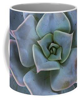 Succulent  Coffee Mug by Anastasy Yarmolovich