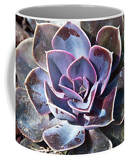 Succulent Plant Poetry Coffee Mug