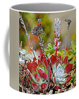 Succulents In Point Lobos State Reserve Near Monterey-california  Coffee Mug