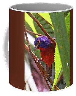 Coffee Mug featuring the photograph Such A Pretty Boy by Sally Sperry