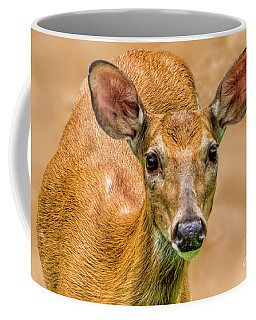 Such A Pretty Face Coffee Mug