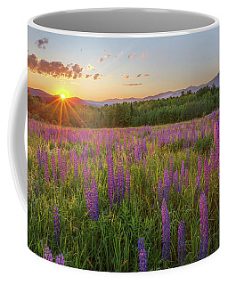 Sugar Hill New Hampshire Lupine Coffee Mug