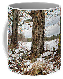 Sugar Maples  Coffee Mug
