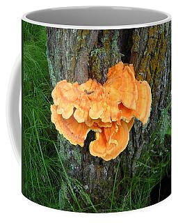 Sulfur Shelf Fungus On A Tree Coffee Mug by Kent Lorentzen