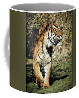 Sumatran Tiger  Coffee Mug
