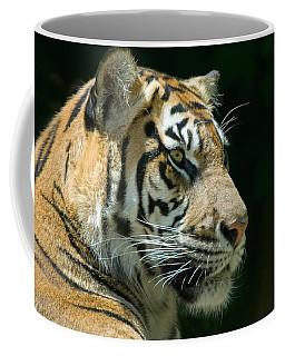 Fauna Coffee Mugs