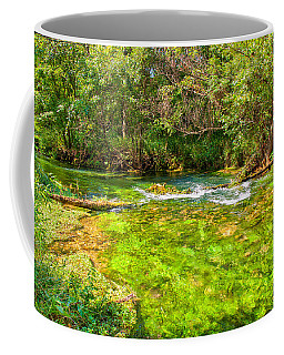 Coffee Mug featuring the photograph Summer At Alley Springs by John M Bailey