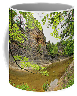 Coffee Mug featuring the photograph Summer At The Pinnacles by Cricket Hackmann