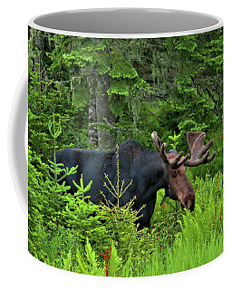 Summer Bull Coffee Mug