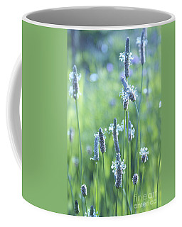 Summer Charm Coffee Mug by Aimelle