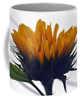 Summer Delight Coffee Mug