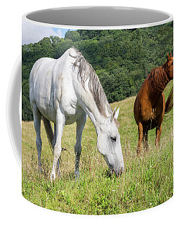 Summer Evening For Horses Coffee Mug